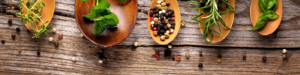 nutritional advice brisbane